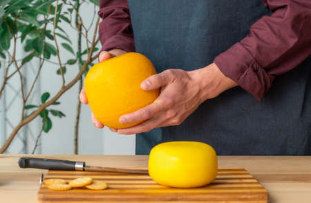 Hands of man hold whole holland cheese Edam and dutch goat cheese from Netherlands on the kitchen