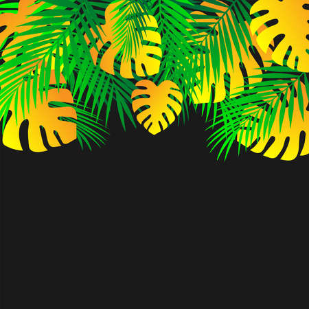 Tropical palm leaves frame Botanical vector illustration. Exotic nature of a map or banner with space for text isolated on a black background. Jungle green and yellow leaf flower pattern.