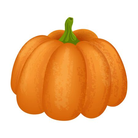 Autumn vector illustration of a bright ripe pumpkin. Can be used for illustrations, design of various objects and on websites. Standard-Bild - 133066961