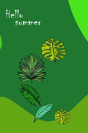 The leaves are tropical plants. Summer rest. Tropical design. Vector background. Ilustração