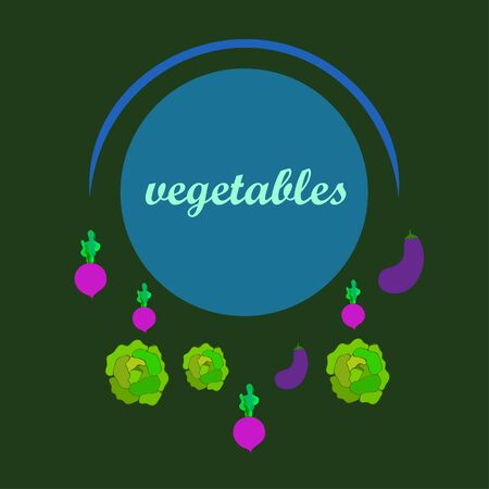 Cabbage, eggplant, beets, fresh vegetables. Organic food poster. Farmer market design. Vector background.