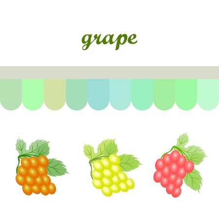 Grape with leaf. Vector elements for design 向量圖像