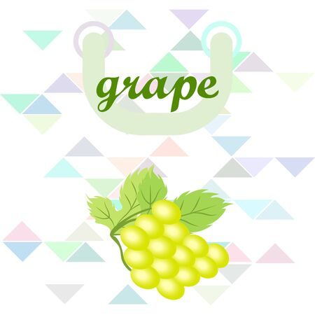 Grape with leaf. Vector elements for design 일러스트