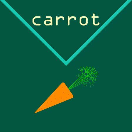 Carrot. Organic food poster. Farmer market design. Vector background. Illustration