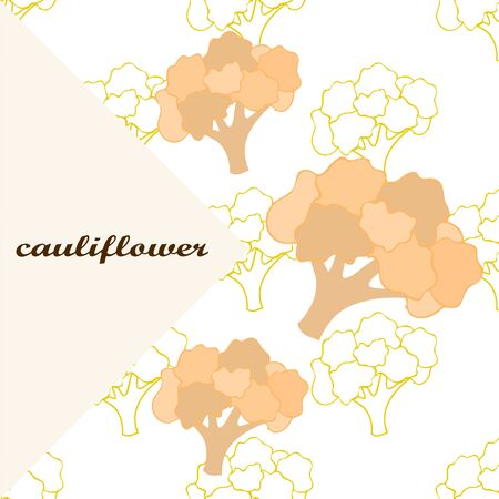 Cauliflower. Organic food poster. Farmer market design. Vector background. Banco de Imagens - 128665003