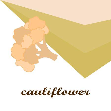Cauliflower. Organic food poster. Farmer market design. Vector background. Banco de Imagens - 128664975
