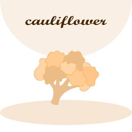 Cauliflower on food poster Banco de Imagens - 128920295