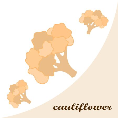Cauliflower on food poster. Banco de Imagens - 128920246