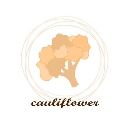 Cauliflower on food poster. Banco de Imagens - 128920261