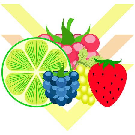 Fruits and berries. Colorful cartoon fruit icons: blackberry, raspberry, grape, strawberry, lime.