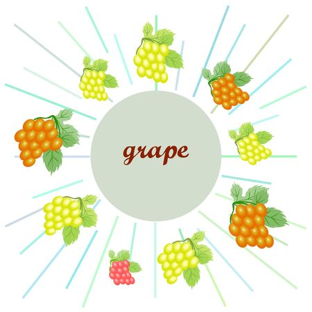 Grape with leaf.