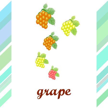 Grape with leaf.