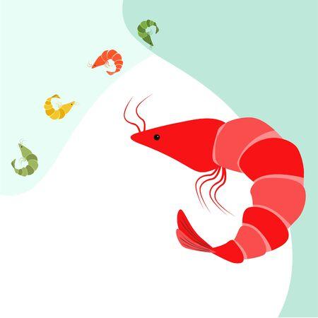 Shrimp seafood on white 스톡 콘텐츠 - 128899167