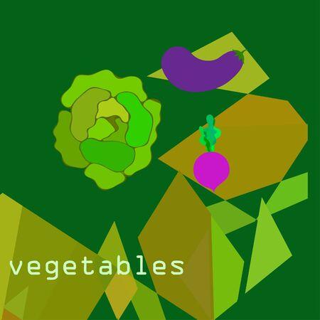 Cabbage, eggplant, beets, fresh vegetables. Organic food poster. Farmer market design. Vector background.