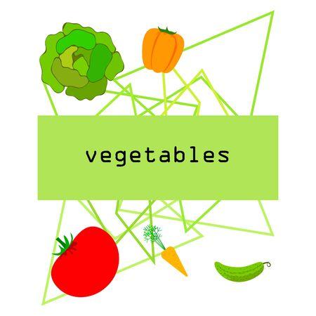 Cabbage, tomato, carrot, pepper, cucumber, fresh vegetables. Organic food poster. Farmer market design. Vector background. 일러스트