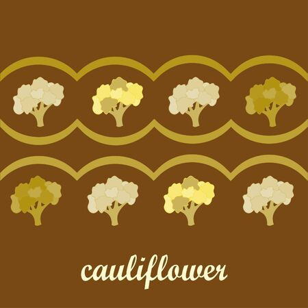 Cauliflower. Organic food poster. Farmer market design. Vector background.