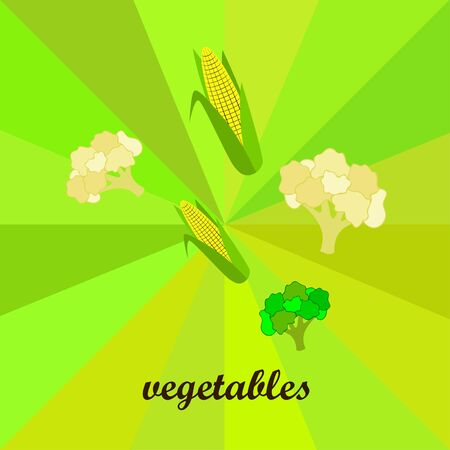Cauliflower, broccoli, corn. Organic food poster. Farmer market design. Vector background Banco de Imagens - 129285981