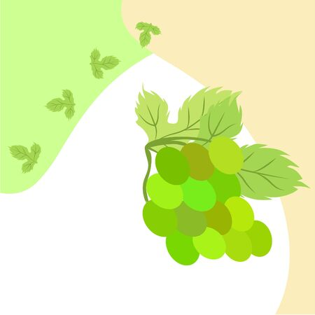 Grape with leaf. Vector elements for design Çizim