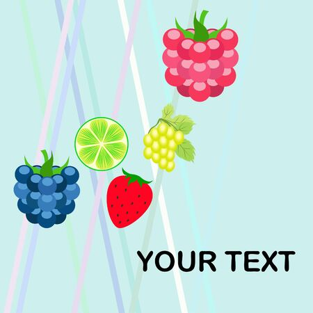 Fruits and berries. Colorful cartoon fruit icons: blackberry, raspberry, grape, strawberry, lime. Vector background. Stok Fotoğraf - 130571500