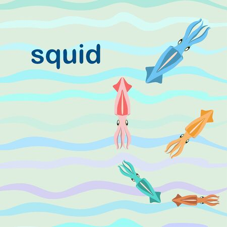 Squid fresh seafood. Vector background. Food and restaurant design.