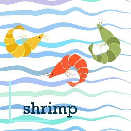 Shrimp fresh seafood. Vector background. Food and restaurant design.
