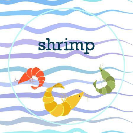 Shrimp fresh seafood. Vector backgroung. Food and restaurant design.  イラスト・ベクター素材