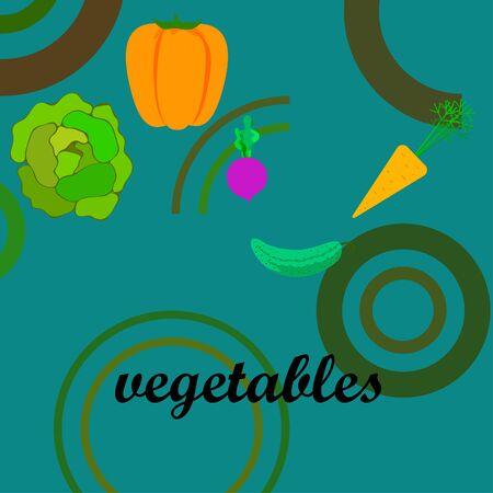 Cabbage, beet, carrot, pepper, cucumber, fresh vegetables. Organic food poster. Farmer market design. Vector background.