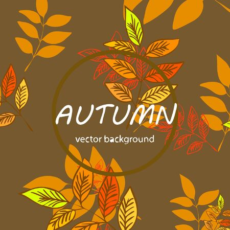 Colorful autumn leaves falling and spinning. Vector background Stock fotó - 133762356