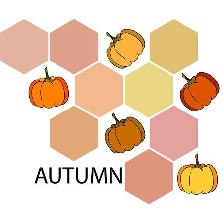 Autumn card, orange pumpkins, vector background. Halloween illustration. October harvest. Nature design Stock fotó - 134863377