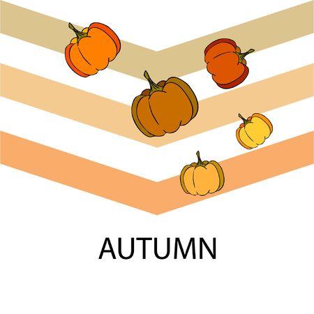 Autumn card, orange pumpkins, vector background. Halloween illustration. October harvest. Nature design Stock fotó - 134863384