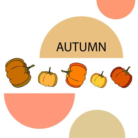 Autumn card, orange pumpkins, vector background. Halloween illustration. October harvest. Nature design Stock fotó - 134863385