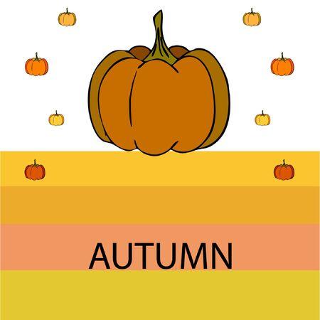 Autumn card, orange pumpkins, vector background. Halloween illustration. October harvest. Nature design Stock fotó - 134863405