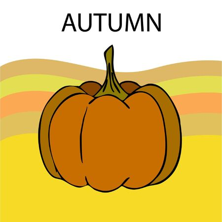Autumn card, orange pumpkins, vector background. Halloween illustration. October harvest. Nature design Stock fotó - 134792504