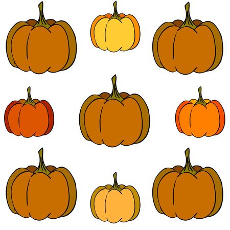 Autumn card, orange pumpkins, vector background. Halloween illustration. October harvest. Nature design Stock fotó - 134792513