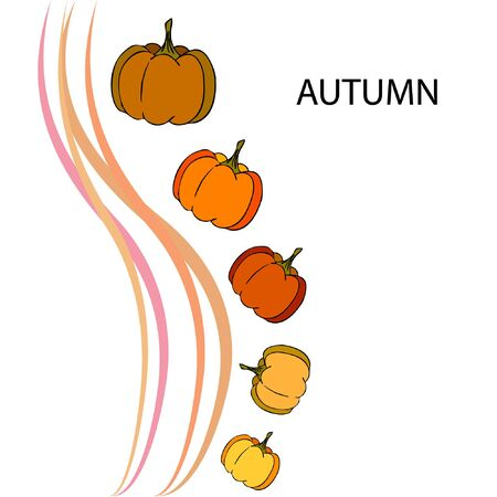 Autumn card, orange pumpkins, vector background. Halloween illustration. October harvest. Nature design Stock fotó - 134792560