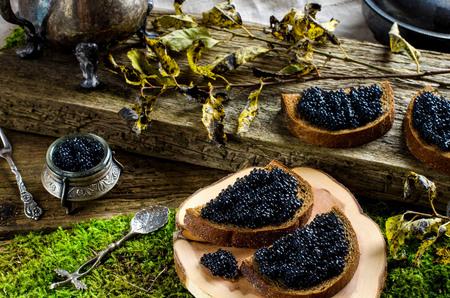 russian food: Black caviar on dark bread. The old Board, moss. Silverware. Vintage style. Russian food.