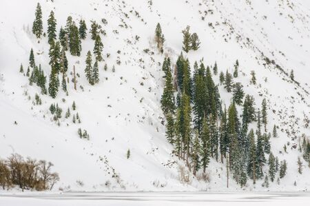Snow-covered mountainside along Convict Lake, California