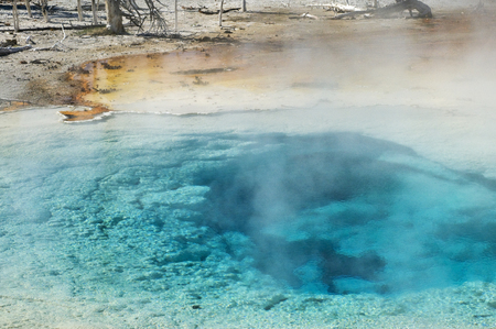 Fumarole by Fountain Paint Pots of Yellowstone National Park, Wyoming
