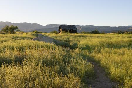 Abandoned wood cabin in Dead Horse Ranch State Park, Arizona 版權商用圖片 - 102021615