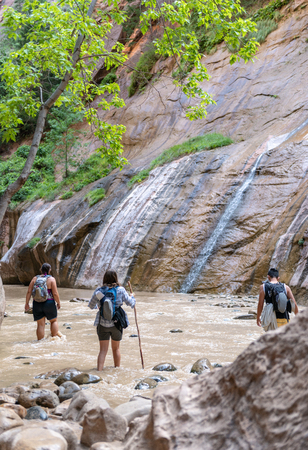 Hikers in the Narrows in Zion National Park, Utah 免版税图像