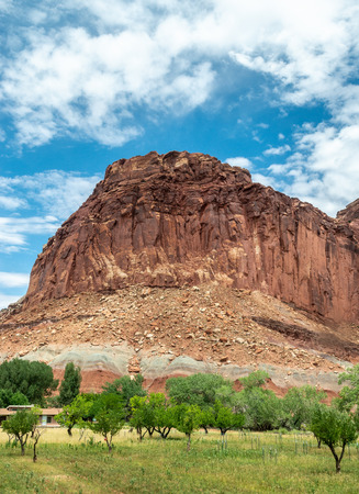 Fruit trees and sandstone formations in Fruita, Capitol Reef National Park, Utah Stock Photo