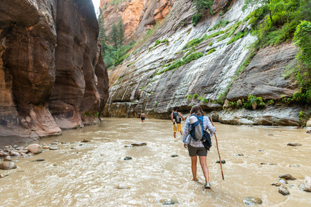 Hikers in the Narrows in Zion National Park, Utah Stock Photo - 115492455