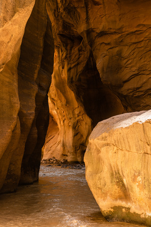 The Narrows in Zion National Park, Utah Stock Photo - 115492545
