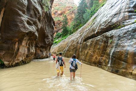Hikers in the Narrows in Zion National Park, Utah Stock Photo - 115492680