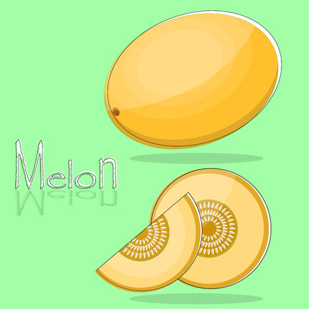 Whole and sliced melon in flat design. Isolated objects