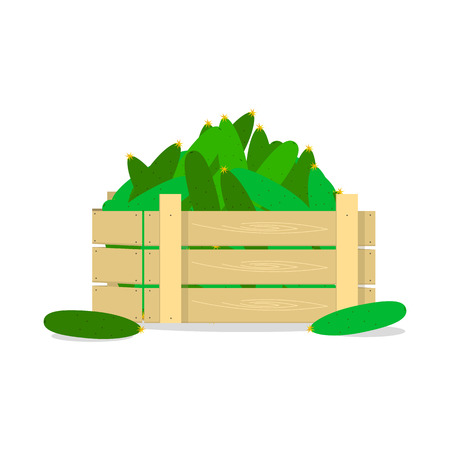 Wooden box with cucumbers, flat design object. Illustration