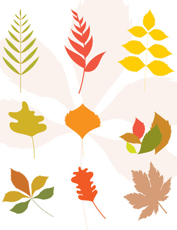 Set of autumn leaves silhouette. Flat design.