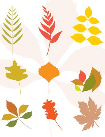 Set of autumn leaves silhouette. Flat design.