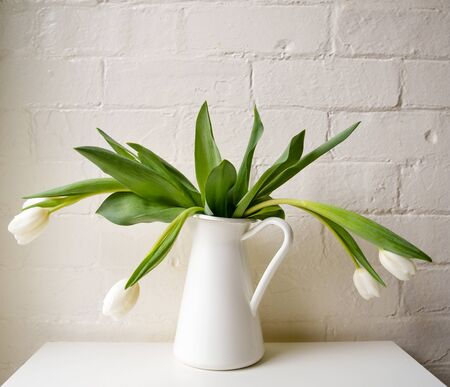 wilting: Wilting white tulips in a white jug Stock Photo