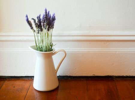 Lavendar in a white jug on an old timber floor by a white wall